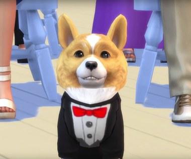 Gamescom'17: The Sims 4: Cats & Dogs - zwiastun dodatku do gry