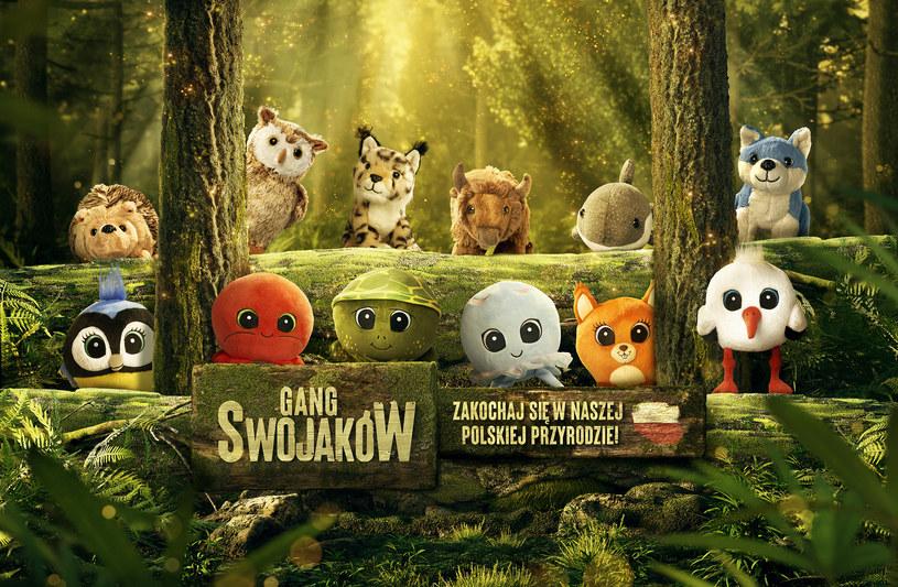 Gang Swojaków /materiały prasowe