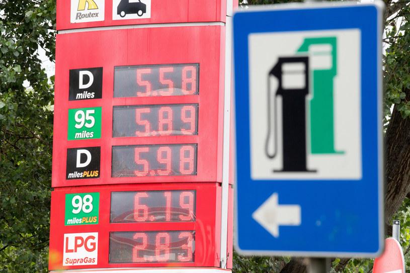 """Gas Station Simulator okazał się """"stacją benzynową"""", którą pokochał cały świat /Wojciech Strozyk/REPORTER /Reporter"""