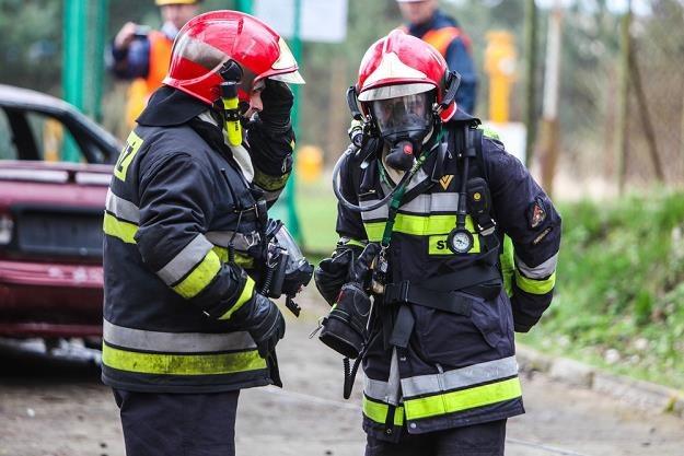 Gasić pożar będą mogli tylko dobrze wyposażeni strażacy / Fot: Daniel Szysz /Reporter