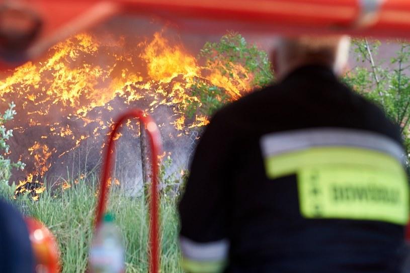 Gaszenie pożaru w Zgierzu /Lukasz Szelag /Reporter