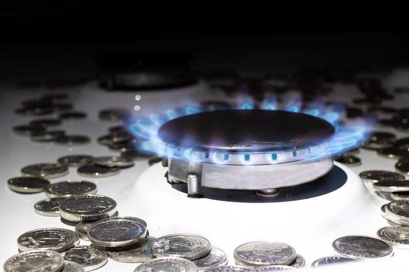 Gaz dla domu - za trzy lata rewolucja na rynku /123RF/PICSEL