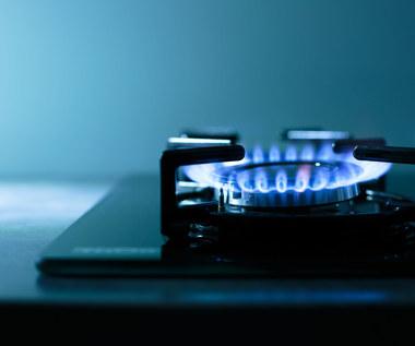 Gaz-System: lekka korekta prognozy popytu na gaz