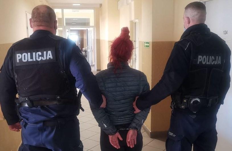 Gdańscy policjanci zatrzymali kobietę podejrzaną o wyrzucenie kota z okna /KMP w Gdańsku /materiały prasowe