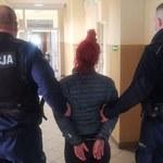 Gdańsk: Miała wyrzucić kota z trzeciego piętra. Usłyszała zarzuty