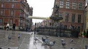 Gdańsk tłem dla filmu o irlandzkim patriocie