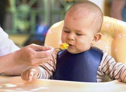 Gdy dziecko kończy 5-6 miesięcy, pora wprowadzać do jego jadłospisu nowe smaki /ThetaXstock