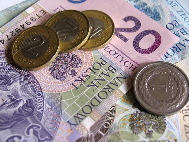 Gdy Europa straszy złoty traci... /© Panthermedia