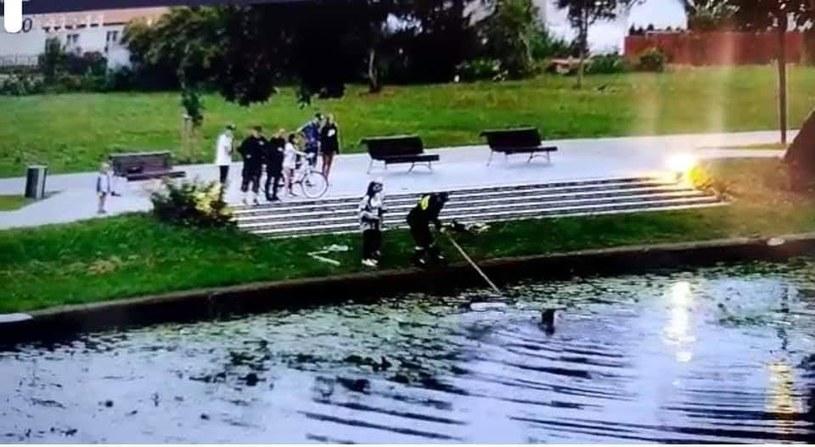 Gdy kobieta zauważyła reklamówkę z kociętami, bez chwili wahania wskoczyła do wody, aby je uratować /KPP w Nowym Dworze Gdańskim /materiały prasowe