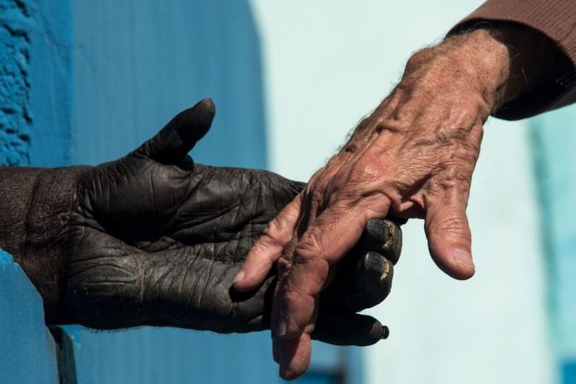 """""""Gdy odkryto, że szympansy rzeczywiście posługują się kamiennymi narzędziami, zaczęto to kojarzyć z osiągnięciem prehistorycznych ludzi"""" /AFP"""
