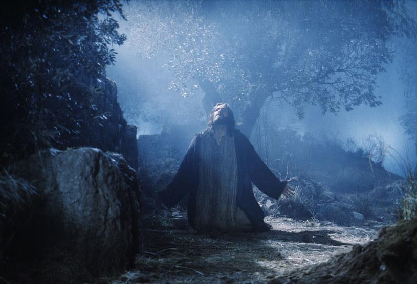 Gdy w dniu poprzedzającym ukrzyżowanie Jezus szedł pomodlić się do Ogrodu Oliwnego (Getsemani), wiedział już, co wydarzy się następnego ranka /LONDON FEATURE/East News /East News