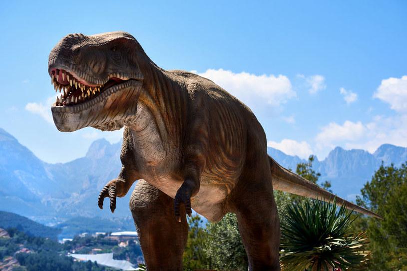 Gdyby asteroida spadła choć kawałek dalej - dinozaury może by całkiem nie wymarły... /123RF/PICSEL
