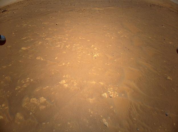 Gdzie jest Perseverance? /NASA/JPL-Caltech /Materiały prasowe