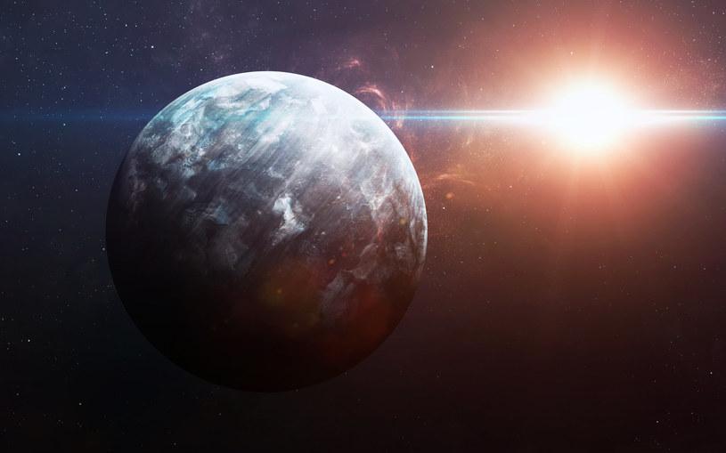 Gdzie jest Planeta X? /123RF/PICSEL