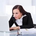 Gdzie w internecie znaleźć informacje o kontrahencie?