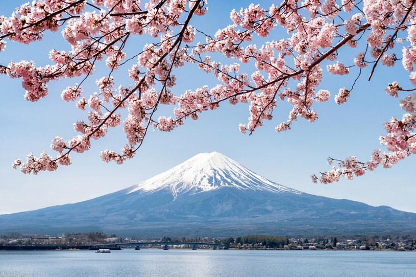 Gdzies u stóp góry Fudżi powstanie miasto przyszłości /123RF/PICSEL
