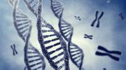 Genetyk: Badania DNA to nie tylko ustalanie ojcostwa