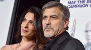 George Clooney i jego żona adoptowali psa!
