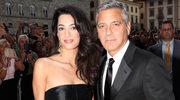 George i Amal Clooney adoptowali psa