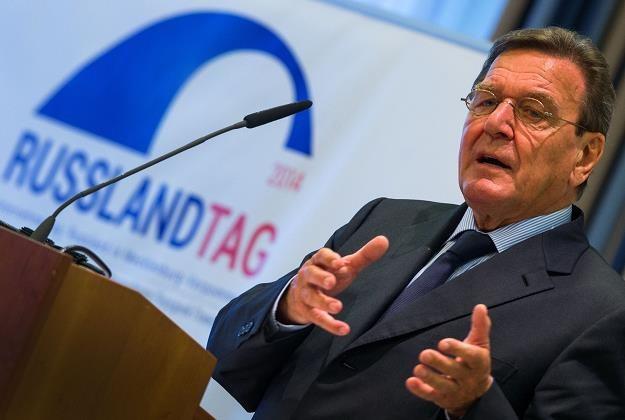 Gerhard Schröder szef rady dyrektorów w rosyjskim koncernie Rosnieft /AFP