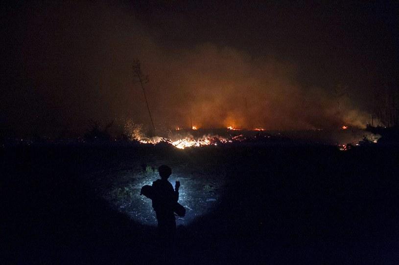 Gigantyczne pożary lasów trawią Indonezję /FULLY HANDOKO /PAP/EPA