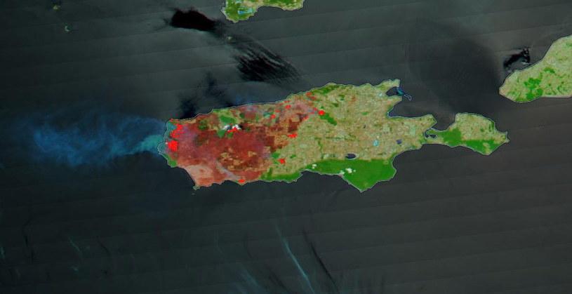 Gigantyczne zniszczenia na Wyspie Kangura /PAP/EPA