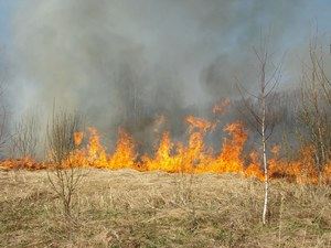 Gigantyczny pożar na Syberii. Są zabici i ranni