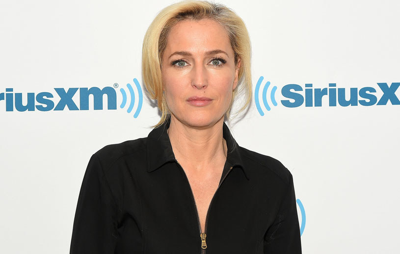 Gillian Anderson /Ben Gabbe /Getty Images