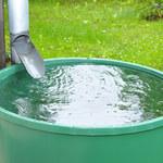 Gliwice. Miasto rozpoczyna program dotacji do łapania deszczówki