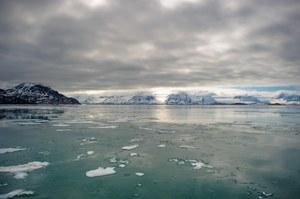 Globalne ocieplenie obudzi starożytne śmiercionośne wirusy?