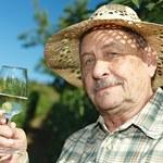 Globalne ocieplenie rujnuje winiarzy na południu Europy. Czy Polska na tym skorzysta?