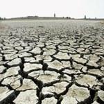 Globalne ocieplenie sprawcą wysokich temperatur