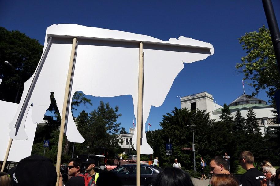 Głosowanie nad ubojem rytualnym ma się odbyć w tym tygodniu /Tomasz Gzell /PAP