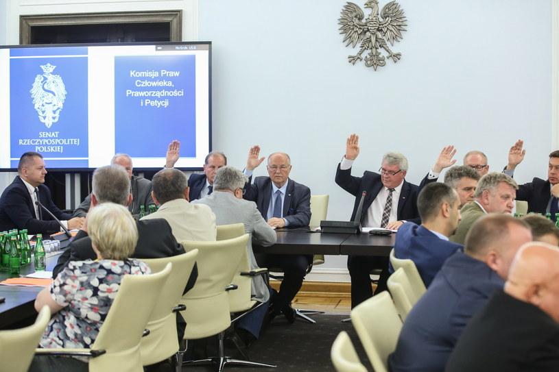 Głosowanie w czasie obrad komisji senackiej /Rafał Guz /PAP