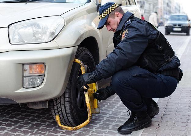 Główne zajęcie straży miejskiej to karanie kierowców / Fot: Łukasz Szeląg /Reporter