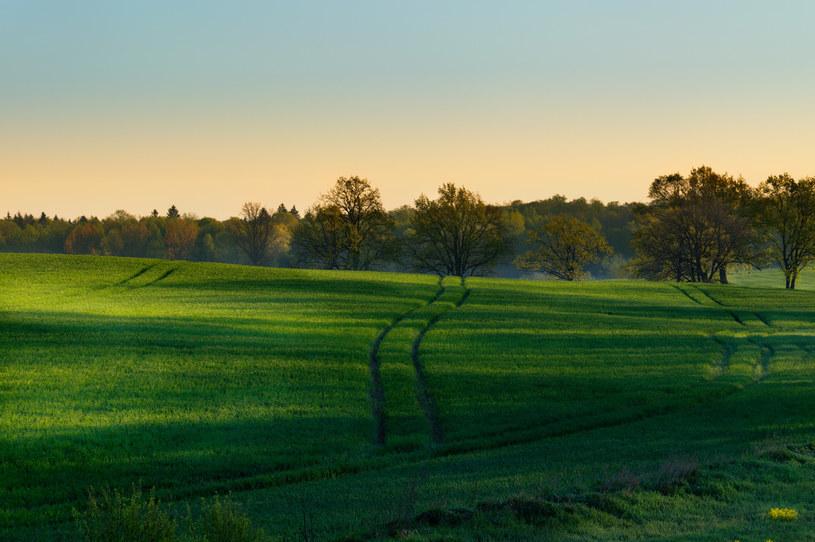 Gmina za oddanie gruntu pod budowę mieszkań ma otrzymać w zamian od inwestora część lokali /©123RF/PICSEL