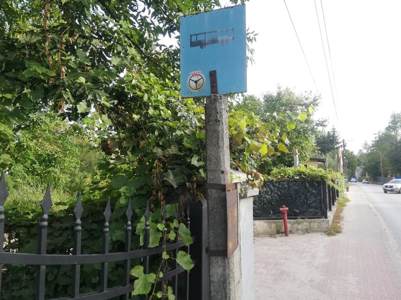 Gmina Ziębice to niejedyne miejsce w Polsce, gdzie brakuje lokalnych autobusów. - Takich miejsc przybywa - alarmuje ekspertka; zdj. ilustracyjne /Wiktor Kazanecki /INTERIA.PL
