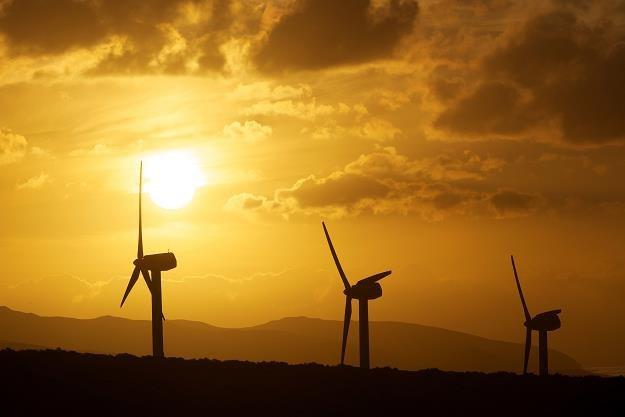 Gminy nie chcą oddać milionów za wiatraki... /EPA
