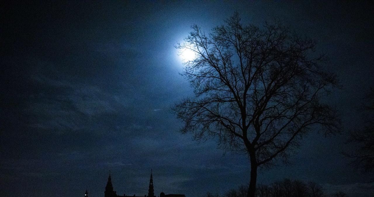 Godzina dla Ziemi. Znane zabytki w ciemnościach