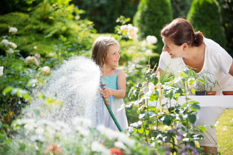 Godziny poranne to najlepsza pora na podlewanie ogrodu /123RF/PICSEL