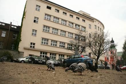 Gołębie zanieczyszczają kamienicę/fot. M. Owsianny /Tutej.pl