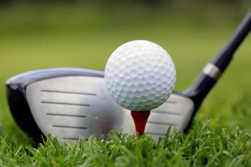 Golf - zdj. ilustracyjne /Mikael Damkier /123RF/PICSEL