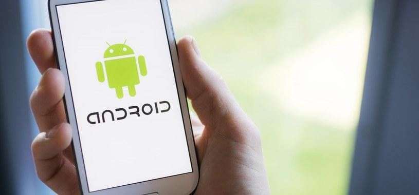 Google przestaje działać - o co chodzi w awarii urządzeń z Androidem? /123RF/PICSEL