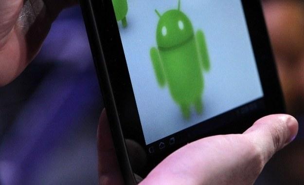 Google rzuci wyzwanie Intelowi, Qualcommowi i innym firmom? /AFP