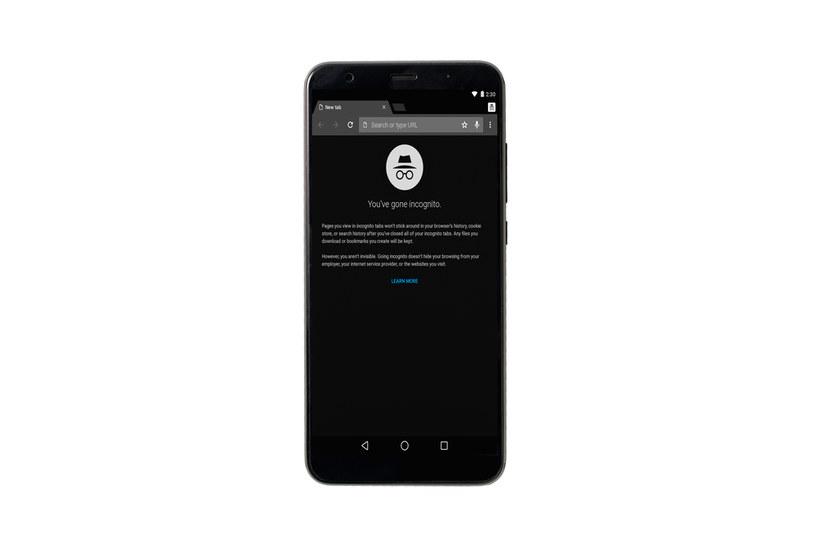 Google wprowadzi tryb incognito do innych aplikacji na iOS /123RF/PICSEL