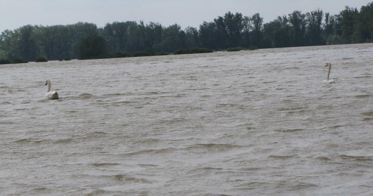 Gorąca Linia: Powódź w gminie Wilków - tylko w RMF FM, cz.7