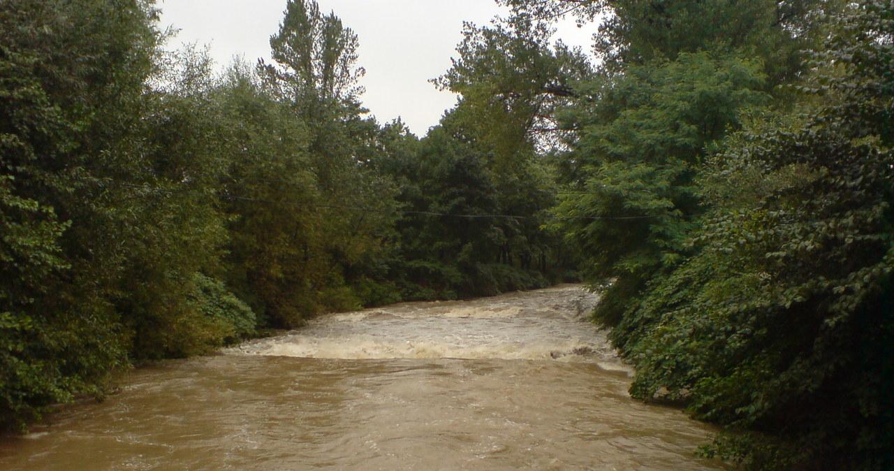 Gorąca Linia: Rzeka Biała zagraża miastu