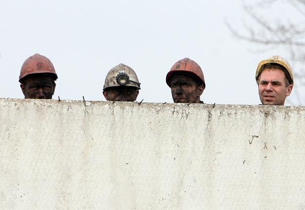 Górnicy szykują się na masówki /AFP