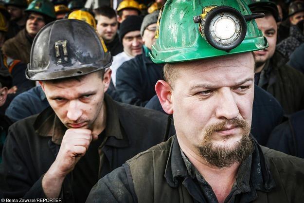 Górnicy z KWK Budryk w Ornontowicach. Fot. Beata Zawrzel /Reporter