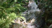 Górski potok można mieć we własnym ogrodzie